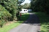 Secluded area at Margrove Park Holidays camp site